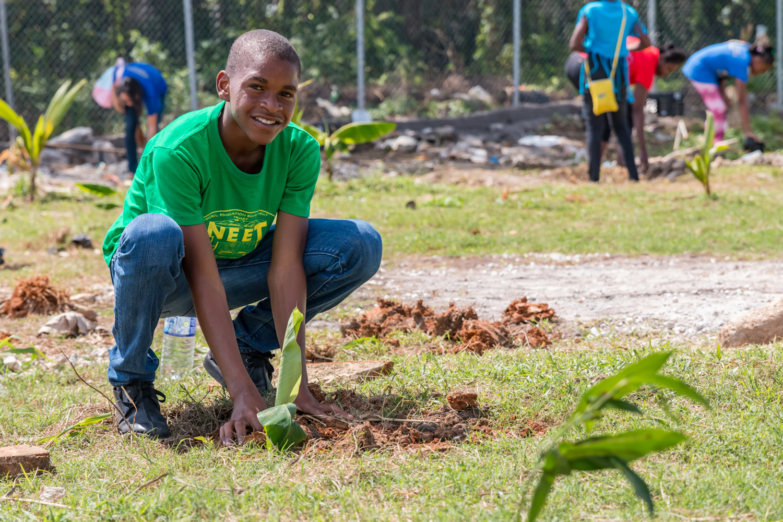Student planting tree