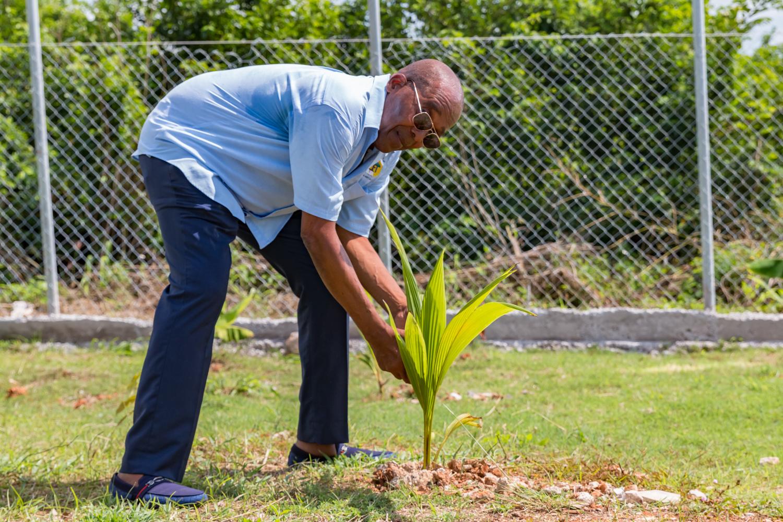 Chairman planting tree