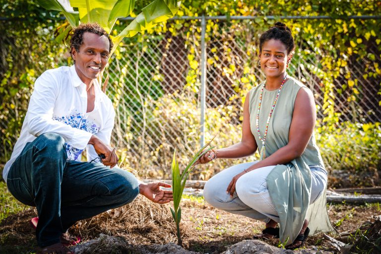 Two adults planting tree